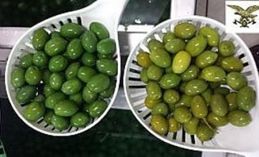 Come sono belle e verdi le olive colorate col solfato di rame. Peccato che poi Ti viene il cancro.